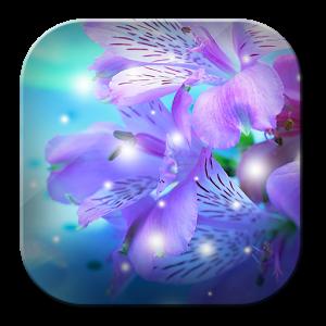 Gentle Orchid WP Live