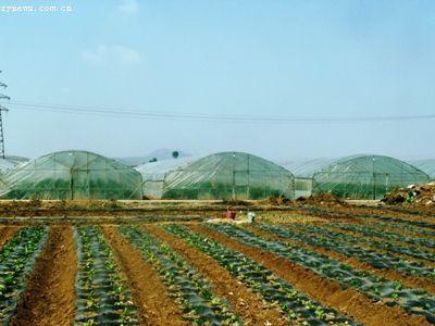 农业产业化经营