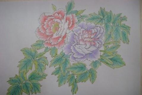 如何用铅笔画牡丹花