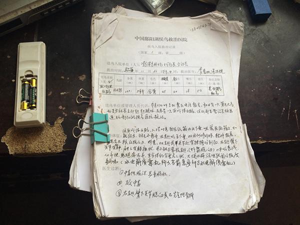 【转】北京时间      七旬候鸟医生:救治超5万只 为每只鸟写病历 - 妙康居士 - 妙康居士~晴樵雪读的博客