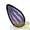 紫色阳葵籽