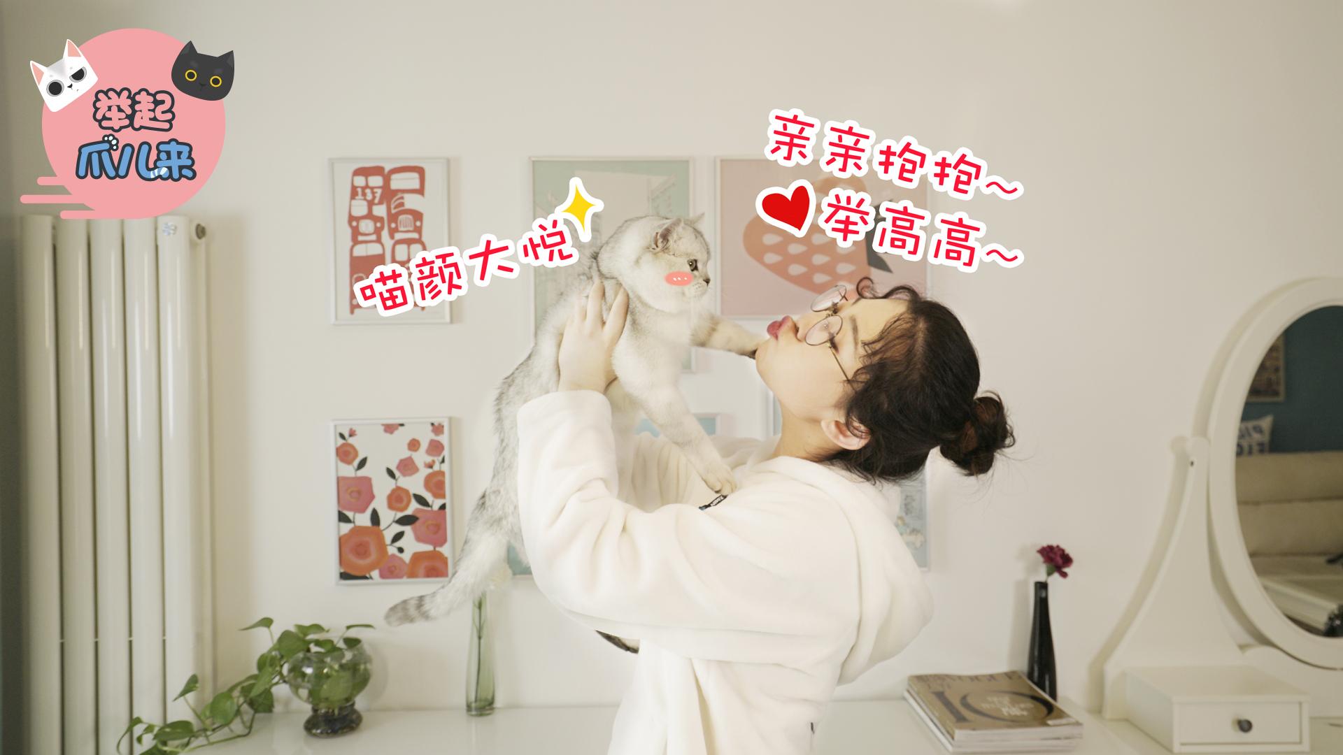 7招让猫主子更开心