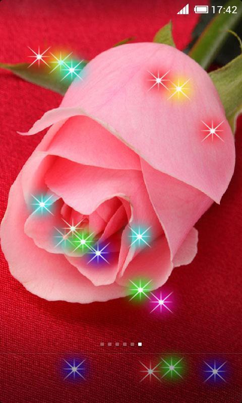 玫瑰花动态壁纸_360手机助手