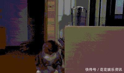 这只胖猫简直表情一个行走1的网友人的好看表情包啊,就是:赶图片