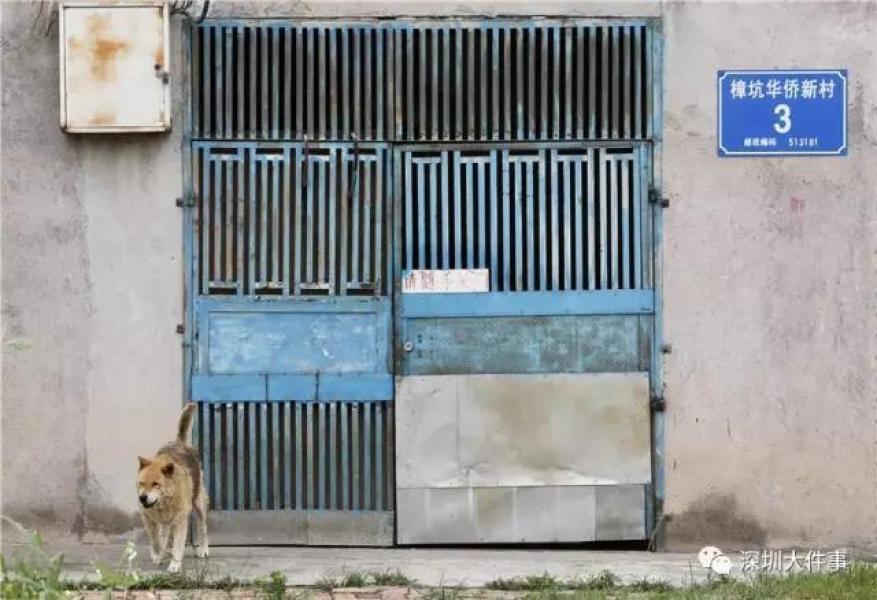 【转】北京时间      全深圳最著名的钉子楼开拆了 - 妙康居士 - 妙康居士~晴樵雪读的博客