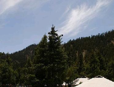 建设青海哈里哈图森林公园,使哈里哈图森林公园成为海西州乃至全省