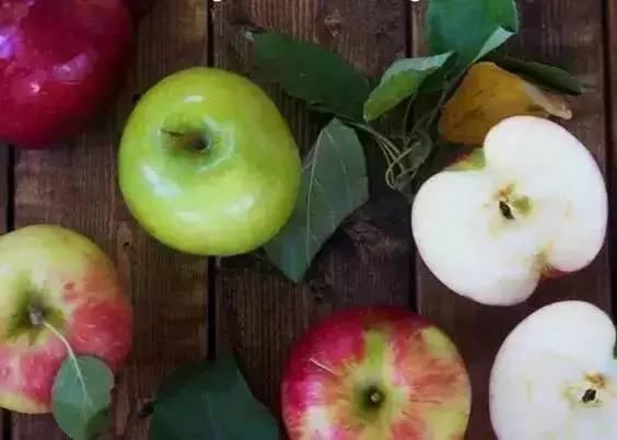 这10种食物:宁愿扔掉也不要放冰箱 - 一统江山 - 一统江山的博客