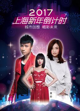 2017上海新年倒计时